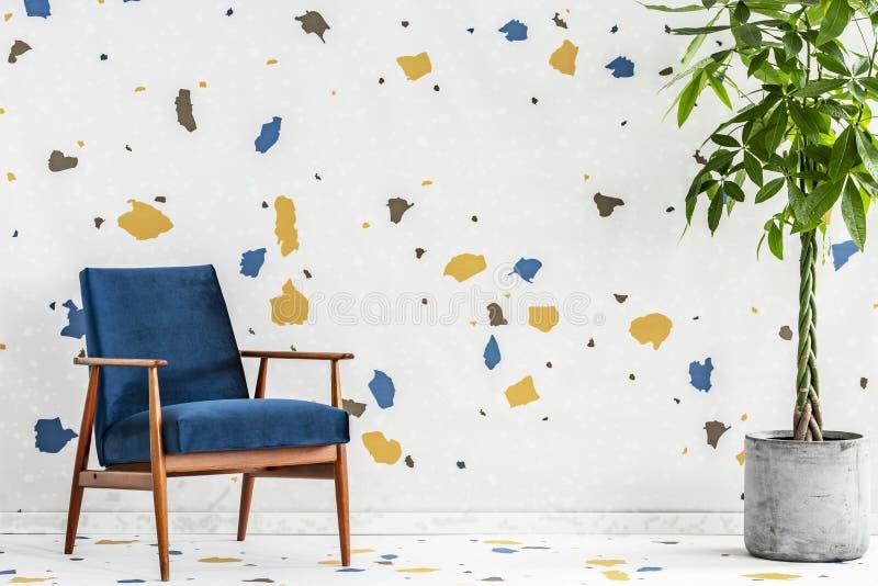 Fauteuil et usine en bois bleus dans l'intérieur moderne de salon avec le papier peint coloré Photo réelle image libre de droits