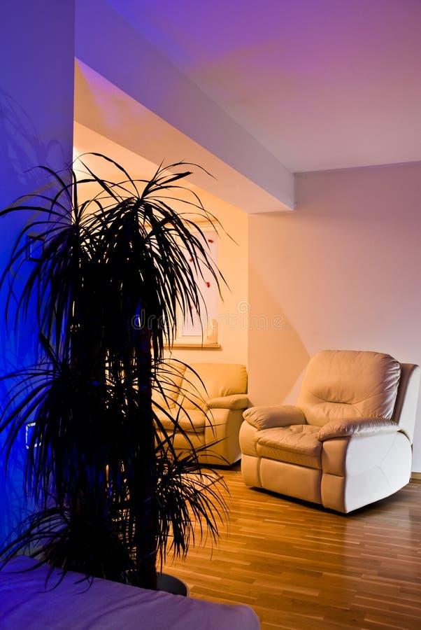 Fauteuils de salle de séjour photographie stock libre de droits