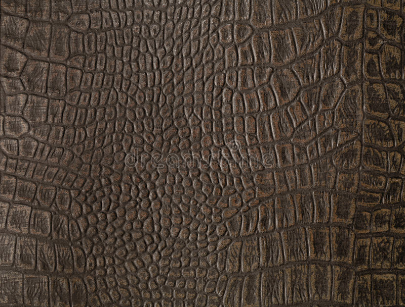Faux alligator skin. Synthetic faux alligator skin from a cover of an old photo album stock photos