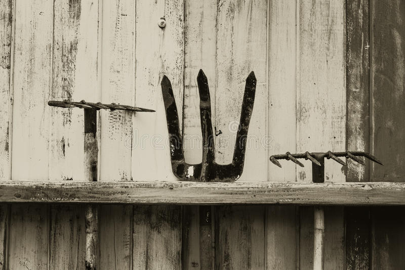 Faux et fourche de râteau outil d'agriculture de ferme sur le mur en bois photo stock
