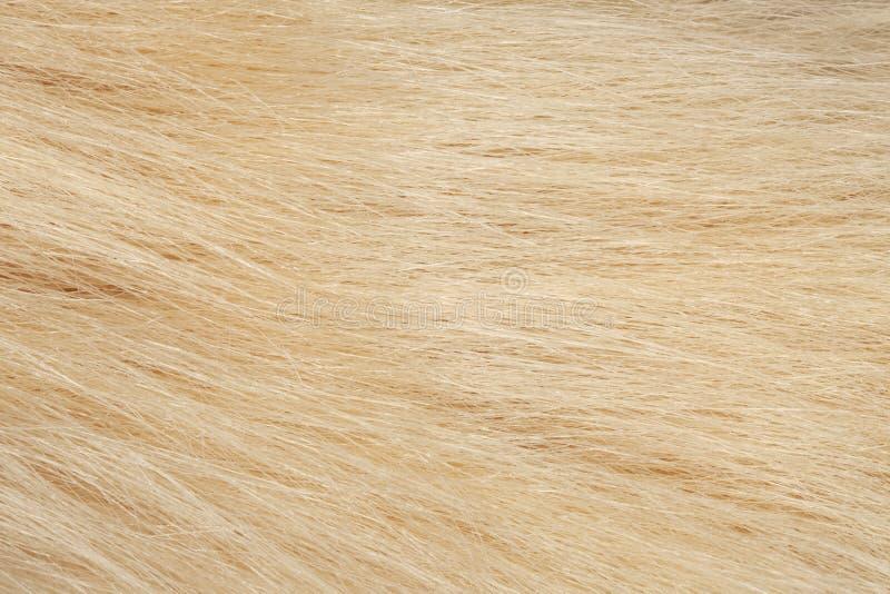 Faux fur texture. Faux fur background textile close-up stock photo