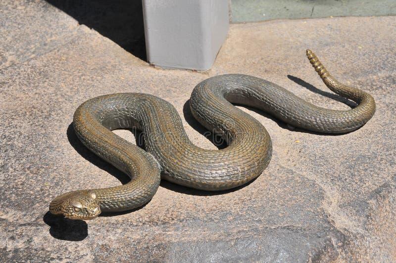 Faux serpent photos stock
