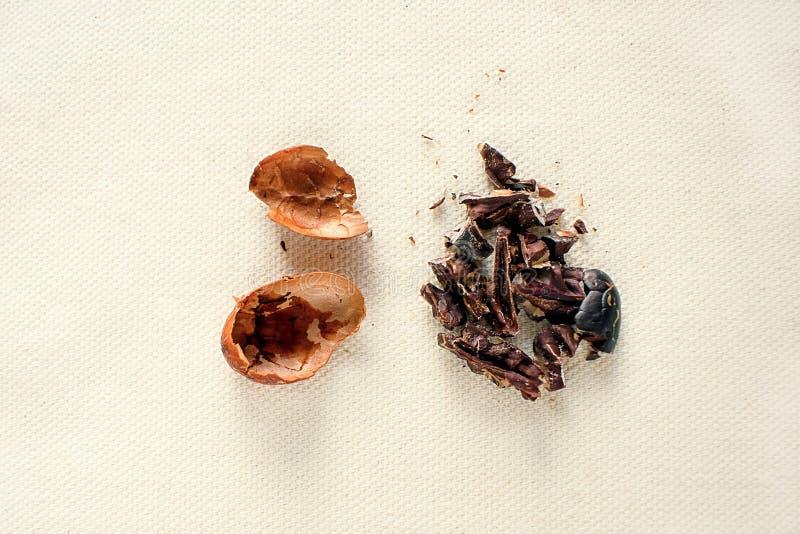 Fava di cacao non imballata fotografia stock