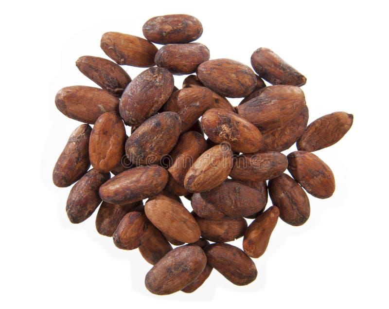Fave di какао стоковые изображения