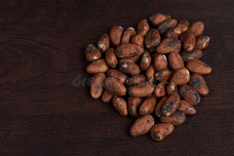 Fave di cacao asciutte di Brown immagini stock