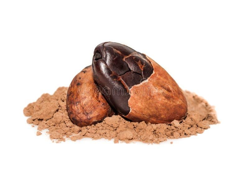 Fave di cacao macro fotografia stock libera da diritti