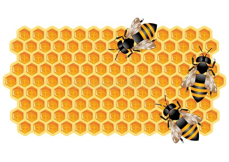 Favo con gli api royalty illustrazione gratis
