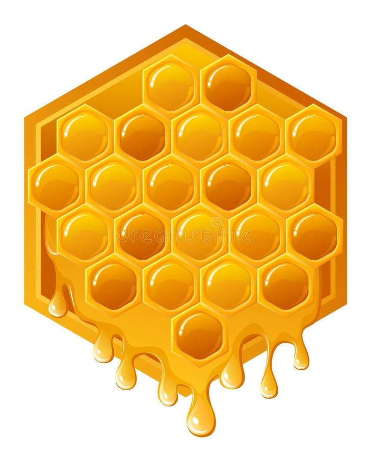 Favo de mel ilustração stock