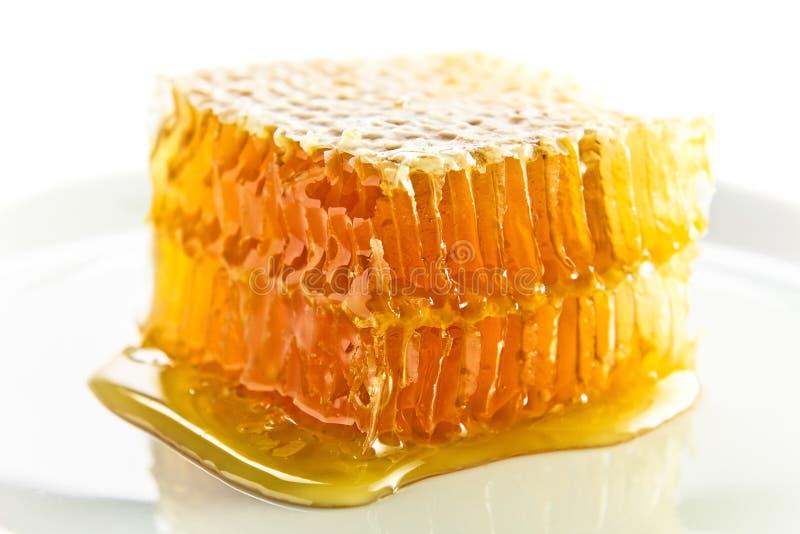 Favo de mel doce com mel fotografia de stock royalty free