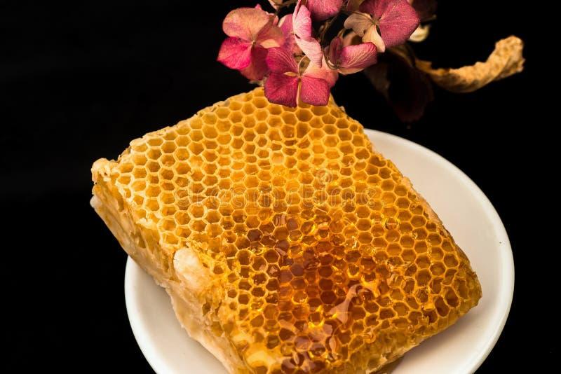 Favo de mel e flor secada no preto fotos de stock