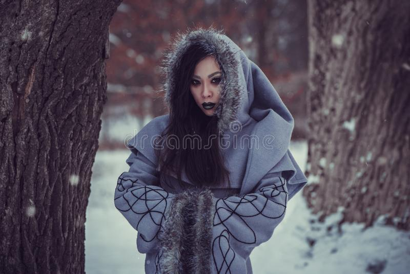 Favola della giovane donna fotografia stock