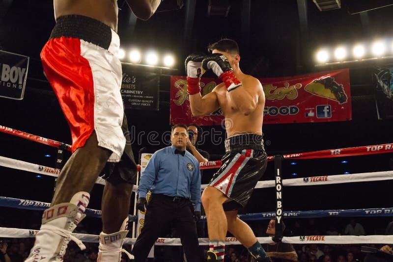 Favorable boxeo en Phoenix, Arizona imágenes de archivo libres de regalías