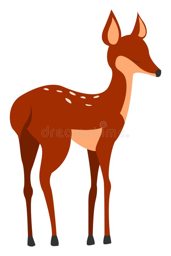 Fawn, illustration, vector. On white background vector illustration