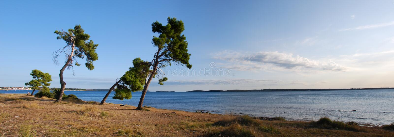 fazana Хорватии стоковая фотография