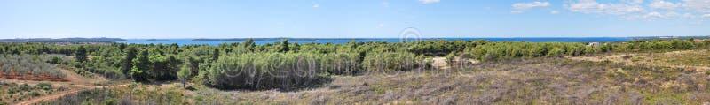fazana Хорватии стоковое изображение