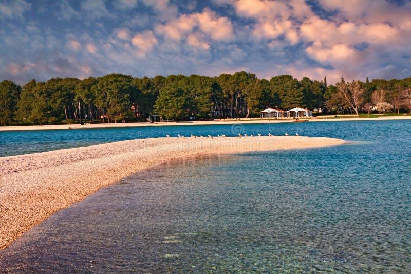 Fazana, Istria, Croácia: paisagem da baía no por do sol imagens de stock