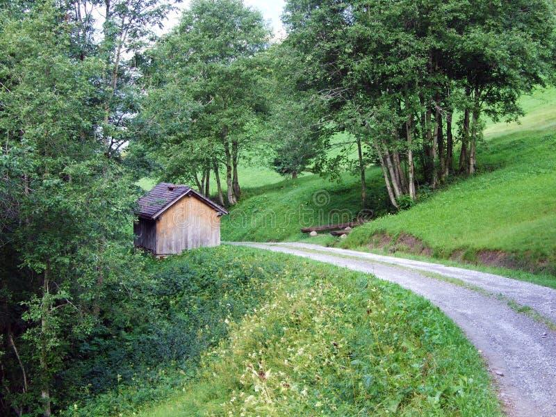 Fazendas tradicionais rurais da arquitetura e da criação no vale alpino de Sernftal imagens de stock royalty free