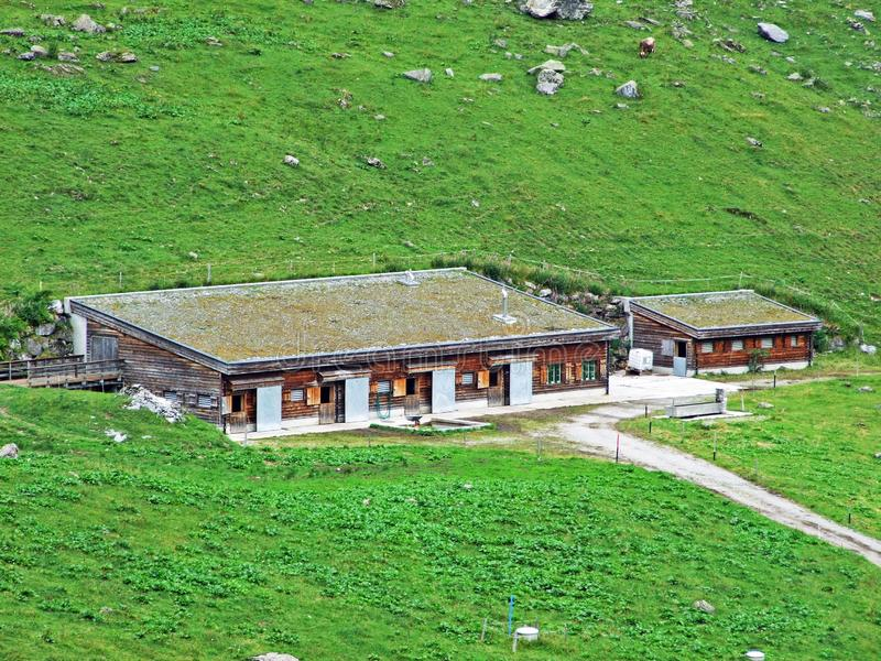 Fazendas tradicionais rurais da arquitetura e da criação no vale alpino de Sernftal fotografia de stock