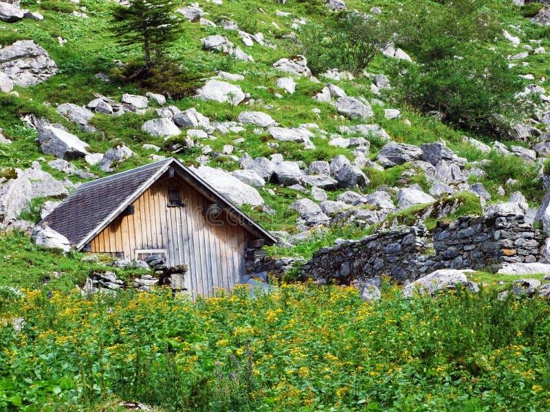 Fazendas tradicionais rurais da arquitetura e da criação no vale alpino de Sernftal imagem de stock