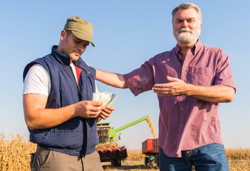 Fazendeiro após a colheita do milho fotos de stock royalty free
