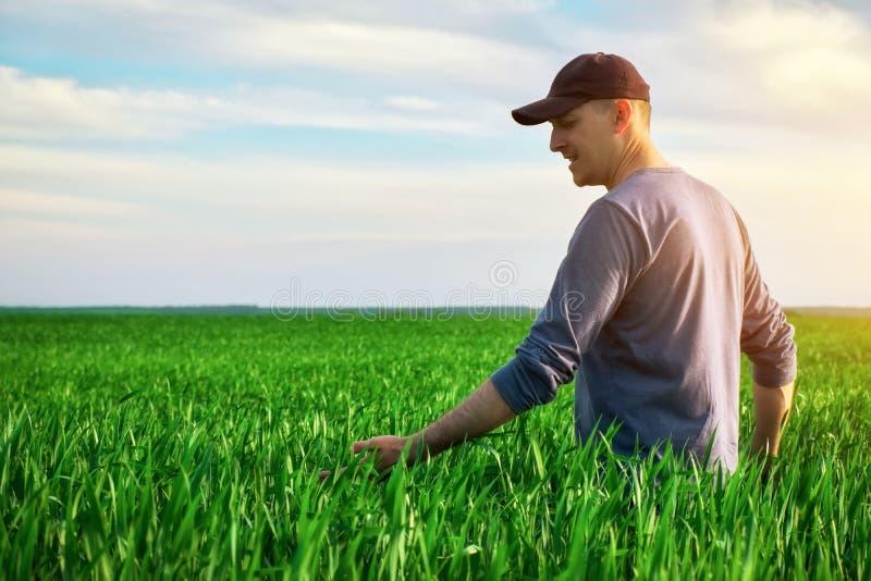 Fazendeiro bonito Jovem caminhando em campo verde Agricultura primaveril imagens de stock royalty free