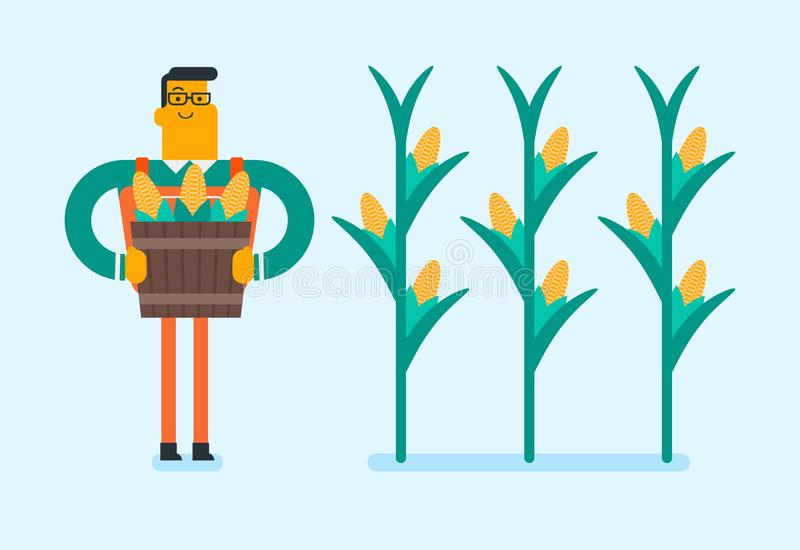 Fazendeiro branco caucasiano que recolhe colheitas do milho ilustração royalty free