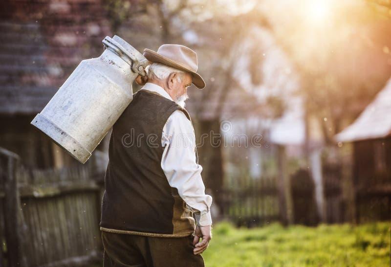 Fazendeiro com chaleira do leite imagem de stock