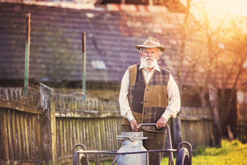 Fazendeiro com chaleira do leite fotografia de stock
