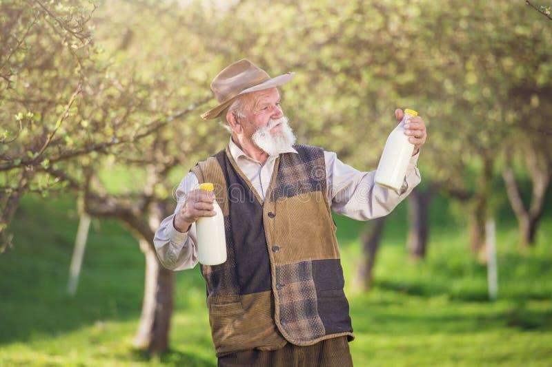 Fazendeiro com garrafas de leite fotografia de stock
