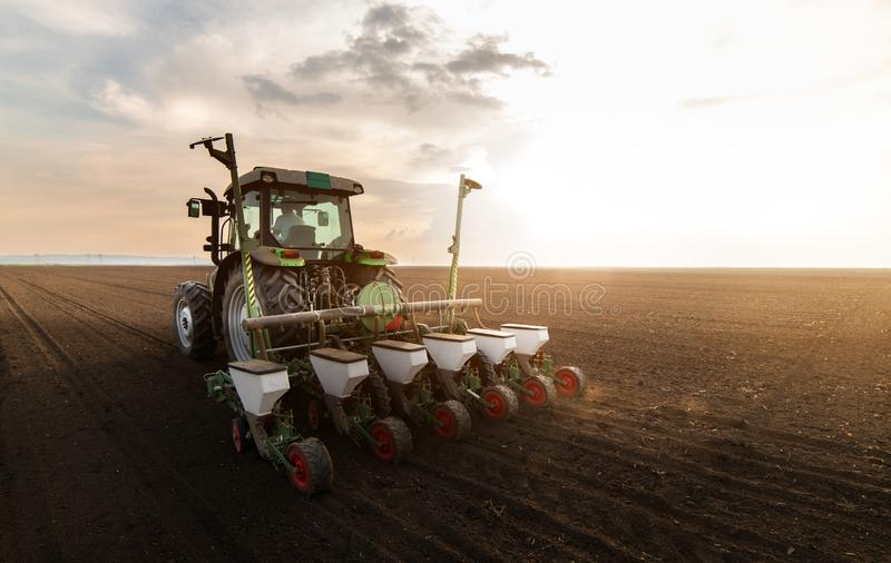 Fazendeiro com o trator que semeia colheitas da soja no campo agr?cola fotos de stock royalty free