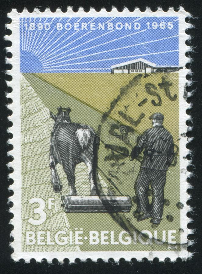 Fazendeiro com rolo puxado por cavalos fotografia de stock royalty free