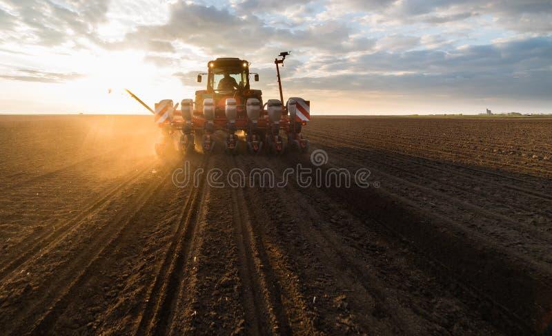 Fazendeiro com semeação do trator - a sementeira colhe no campo agrícola fotos de stock
