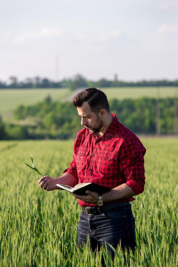 Fazendeiro considerável novo com o diário que está no campo de trigo imagens de stock
