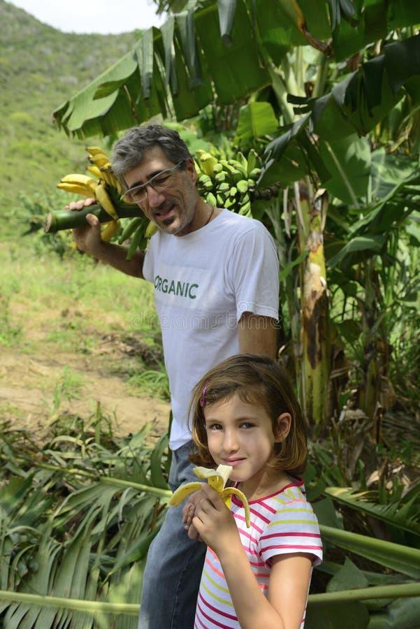 Fazendeiro e filha na plantação de banana fotos de stock royalty free