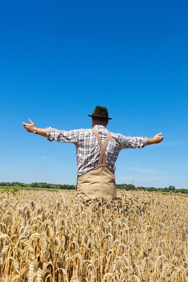 Fazendeiro em um campo de trigo imagens de stock royalty free