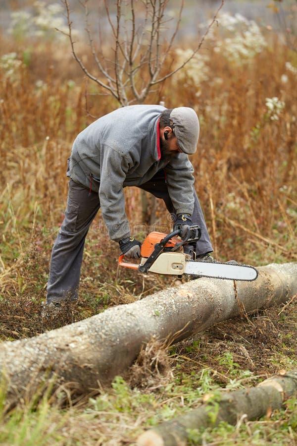 Fazendeiro farpado com a serra de cadeia, trabalhando imagem de stock