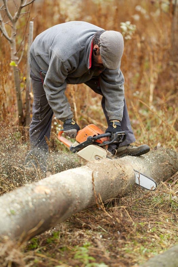 Fazendeiro farpado com a serra de cadeia, trabalhando fotos de stock royalty free