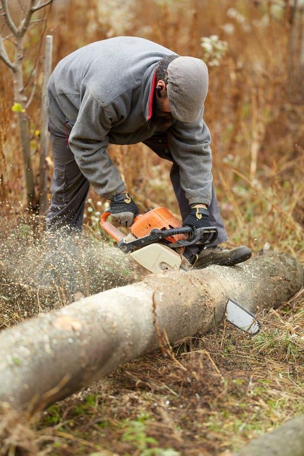 Fazendeiro farpado com a serra de cadeia, trabalhando imagens de stock royalty free