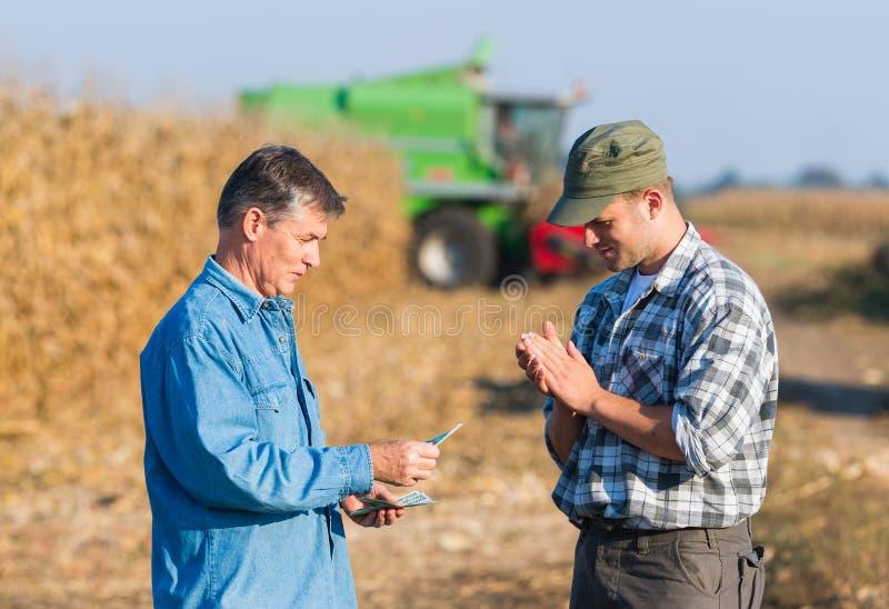 Fazendeiro feliz após a colheita do milho fotografia de stock royalty free