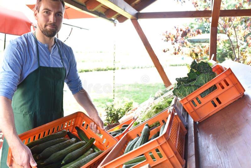 Fazendeiro feliz que cresce e que colhe vegetais na exploração agrícola foto de stock royalty free