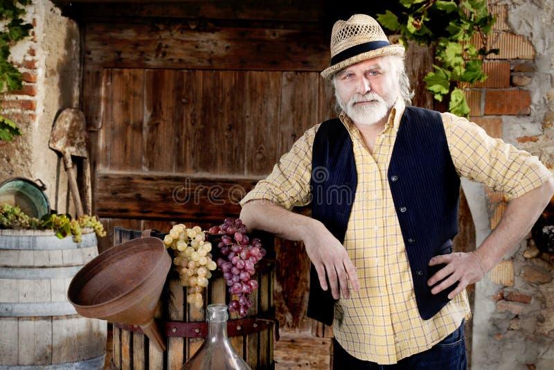 Fazendeiro fresco que trabalha em seus vinhedos fotografia de stock