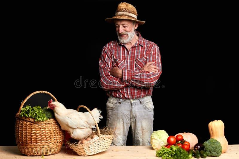 Fazendeiro maduro que giggling e que olha saltar da galinha da cesta com ovos frescos fotografia de stock royalty free