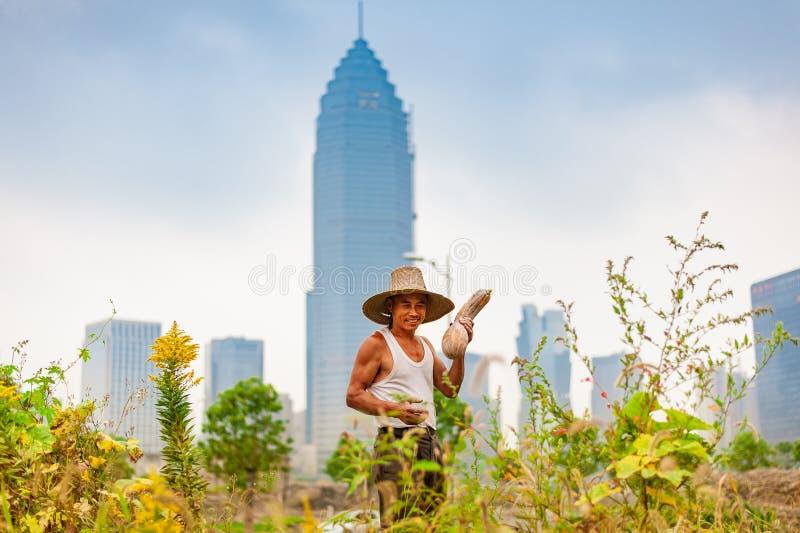 Fazendeiro masculino com a abóbora contra o arranha-céus fotografia de stock