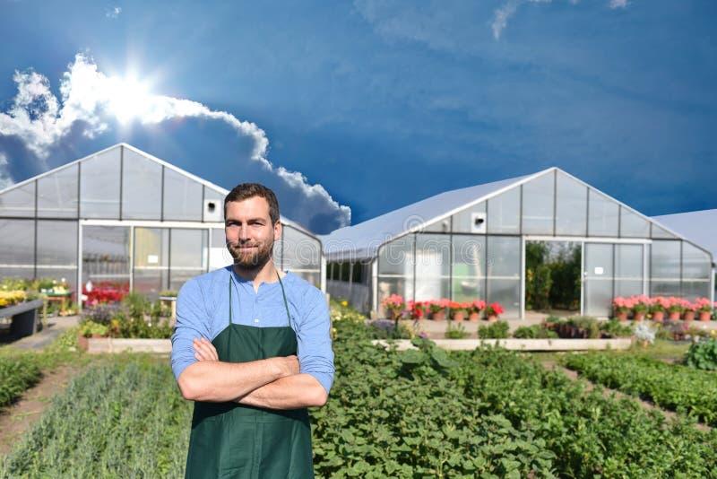 Fazendeiro na agricultura que cultiva os vegetais - estufas no th imagens de stock royalty free