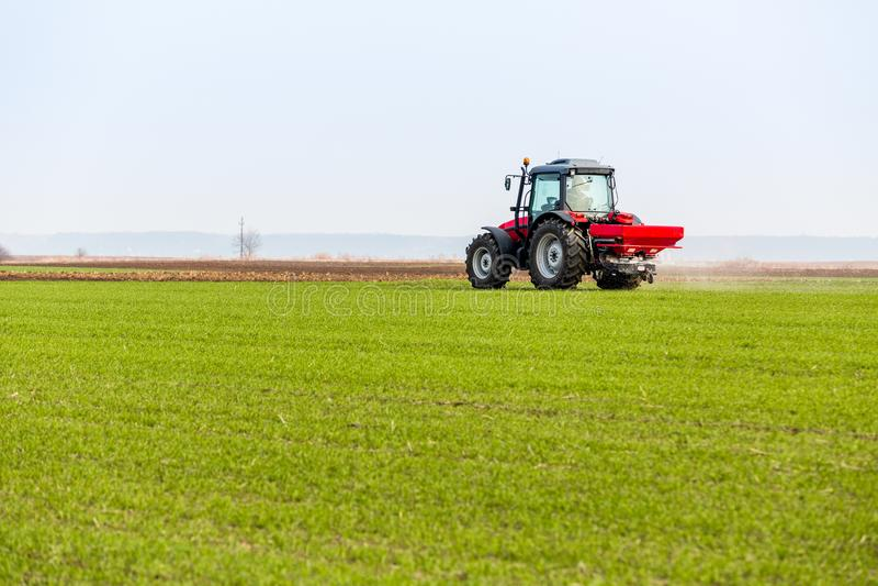 Fazendeiro no campo de trigo da fertilização do trator na mola com npk fotografia de stock
