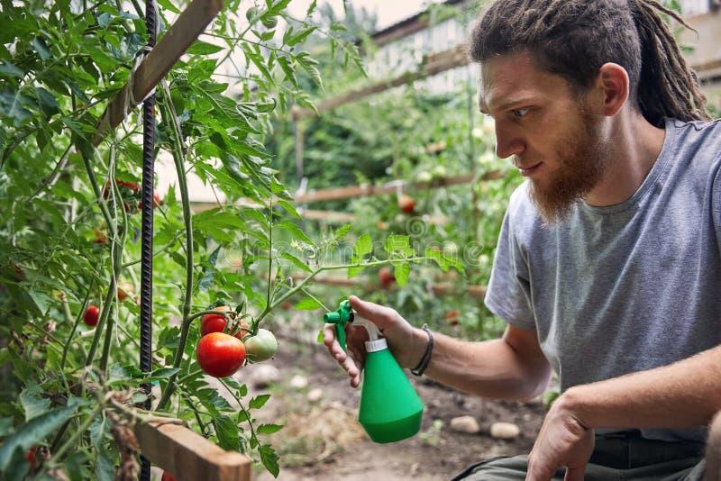 Fazendeiro no jardim imagens de stock
