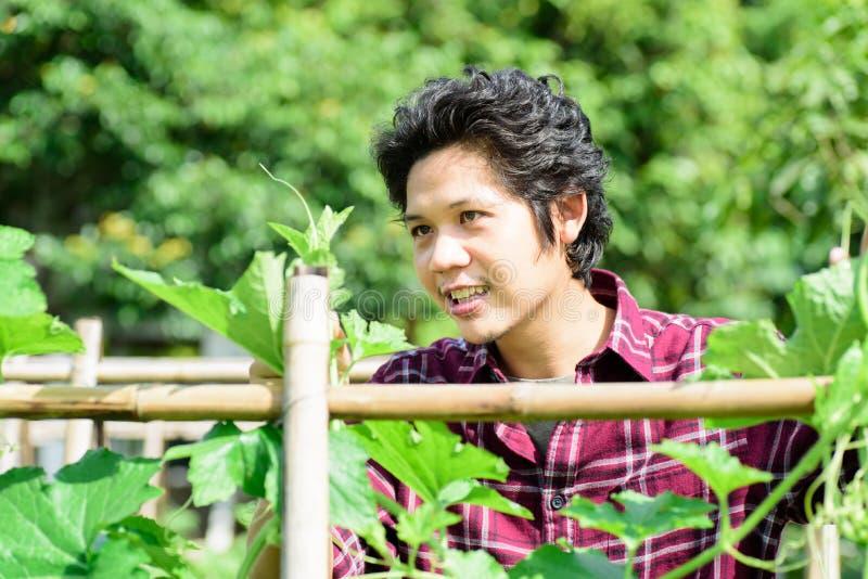 Fazendeiro novo asiático no jardim vegetal imagens de stock royalty free