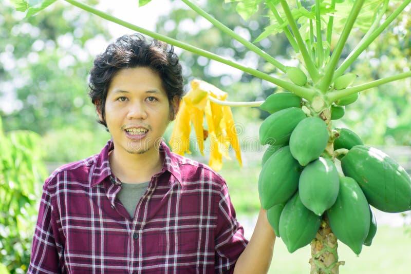 Fazendeiro novo asiático que está com árvore de papaia fotografia de stock royalty free