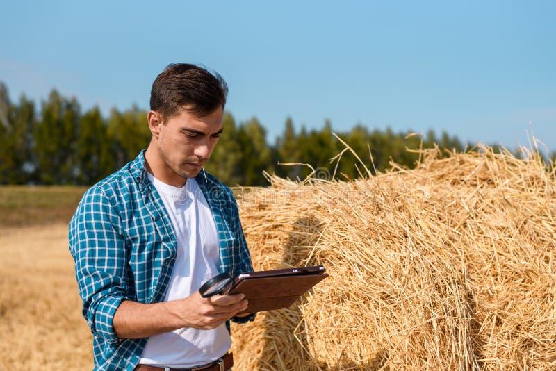 Fazendeiro novo com uma tabuleta ao lado de um monte de feno no campo, colheita, indústria, cultivando, avaliação, negócio imagem de stock