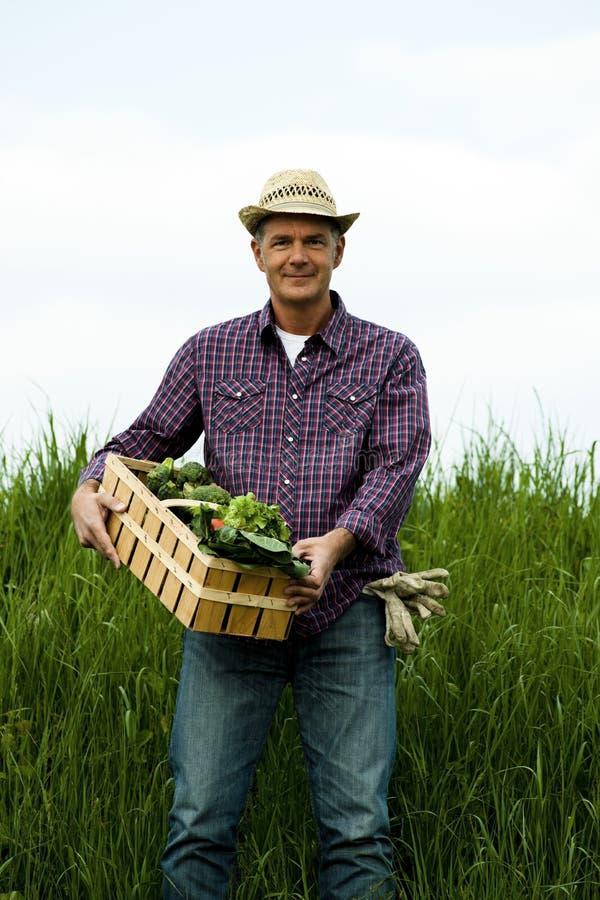 Fazendeiro que carreg uma caixa de vegetais foto de stock